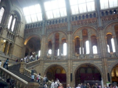 Natural History Museum (the main hall from another angle)